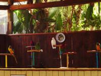 Fuerteventura_internship _oasis park