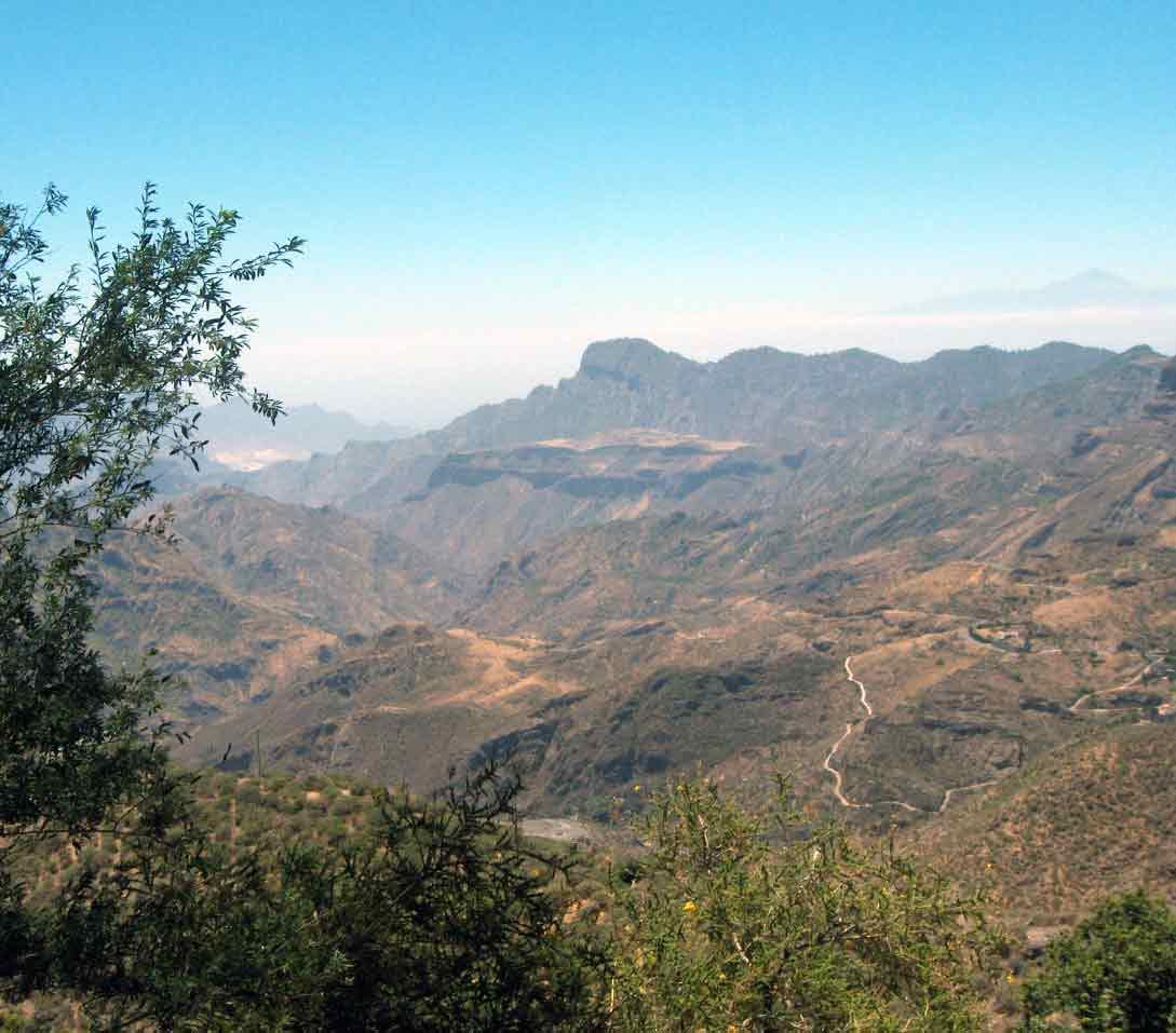 Gran-Canaria_internship_information