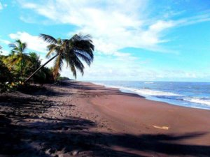 Internships abroad location Costa Rica