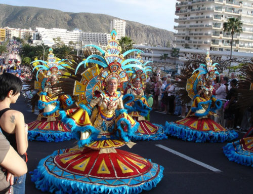 Carnival 2014, traineeship on the Canary Islands