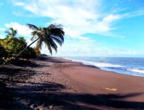 Things to know about your internship in Costa Rica