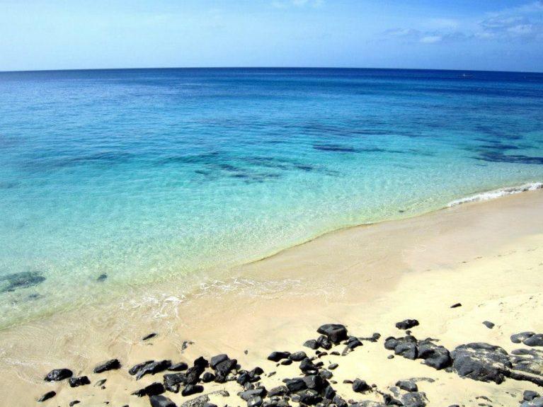 internship on Fuerteventura with Spanish Work Exchange Programme