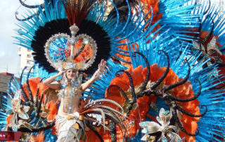 intern on the Canary Islands_ Carnival