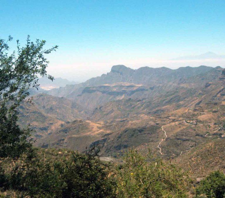 internship on Gran Canaria